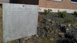 rain garden sigsn300